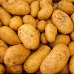 What type of potatoes are best for frying for French fries