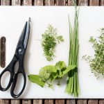 Can you use fresh herbs in the slow cooker?