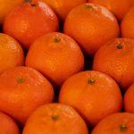 Can you Freeze Mandarin Oranges?