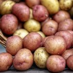 How to prevent potatoes from sprouting
